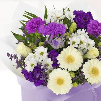 flower free 1