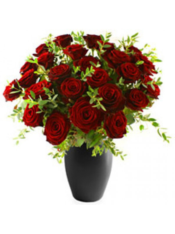 Same Day Roses