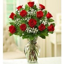 Dozen Deluxe Roses