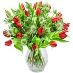 Christmas Tulips & Thistles