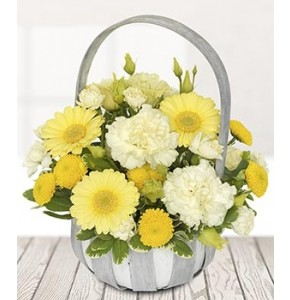 Sunshine Basket