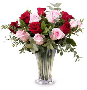 Dozen Red & Pink Mixed Roses