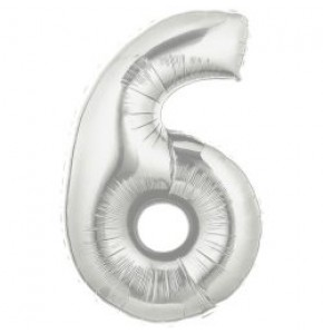 Silver Number 6