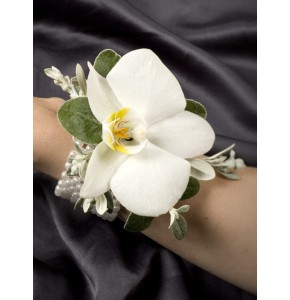 Enchanted White Orchid Corsage