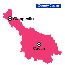 Flower Delivery Cavan Areas