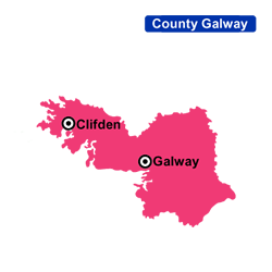 Flower Delivery Galway Areas